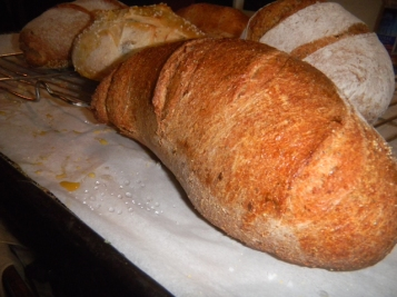 Jane's bread, just out of the oven, photo by Robert
