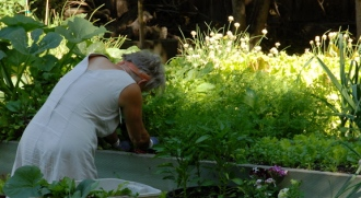 evonne gardening